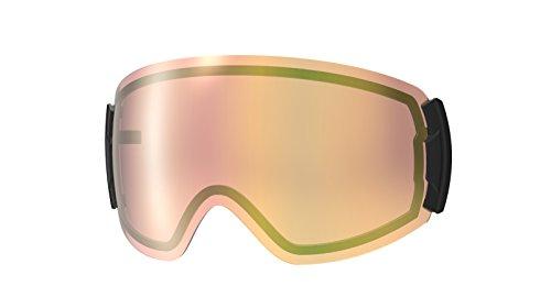 【国産ブランド】SWANS(スワンズ) スキー スノーボード ゴーグル スペアレンズ プレミアムアンチフォグ 偏光レンズ ミラー 撥水 ロヴォ用 スキー スノーボード LRV-1354 PSBR パステルブラウンミラー×偏光ピンク
