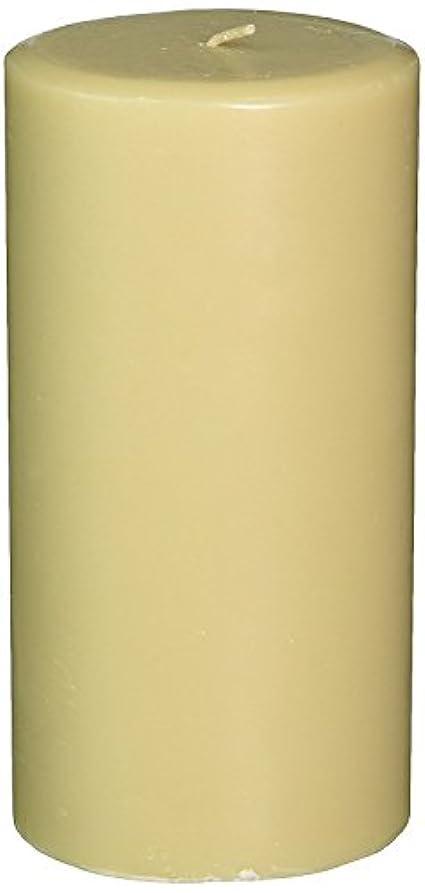 応じる火山学者コンプライアンスNorthern Lights Candles Cotton Blossom & Dogwood Fragrance Palette Pillar Candle, 3 x 6' [並行輸入品]