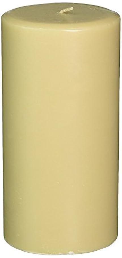 重くする驚コントロールNorthern Lights Candles Cotton Blossom & Dogwood Fragrance Palette Pillar Candle, 3 x 6' [並行輸入品]