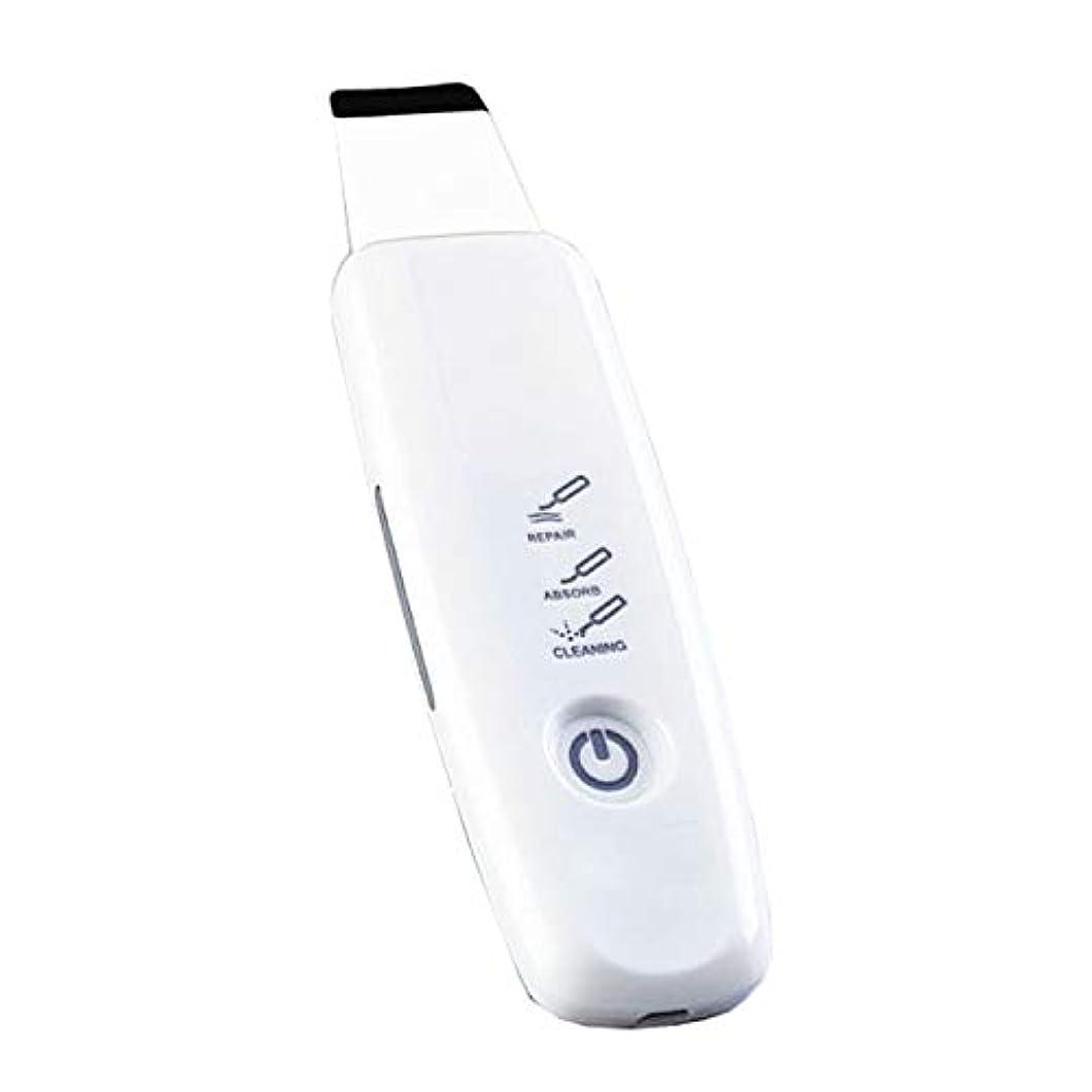 にきびの超音波シャベルへの美の器械の気孔の洗剤