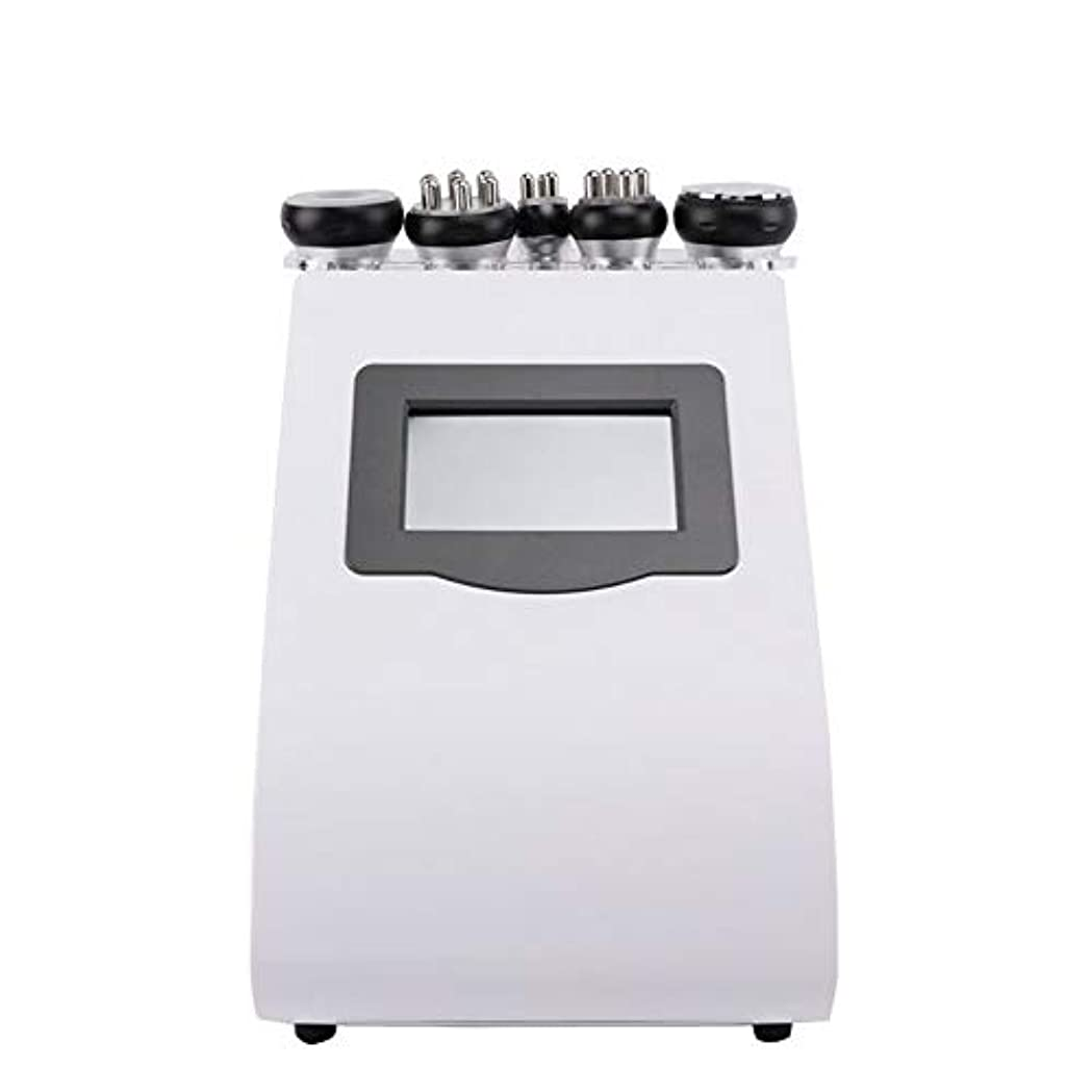 勘違いするテザー細菌ZYL-YL 1台5役 40K減量美容機器 業務用 痩身ラジオ波 RF減量デバイス 電気痩身マシン バキューム吸引 ダイエット エステ 小顔
