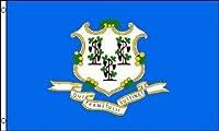 国旗 アメリカ コネティカット州旗 90×150cm