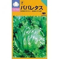 レタス 種 パパレタス 小袋(約1.6ml)