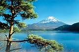 富士山松 ポスター