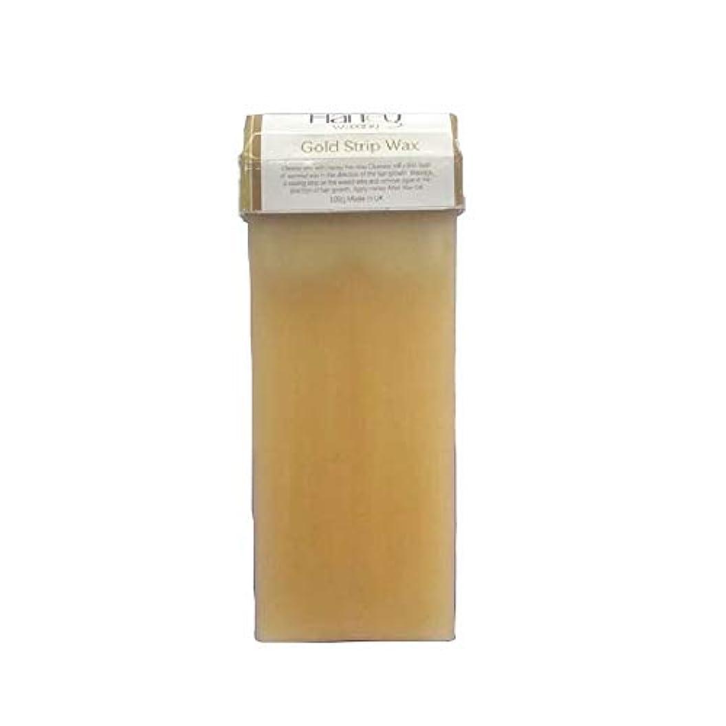 育成有毒な合併症セルフ脱毛 ゴールドワックス(100g) ブラジリアンワックス メンズ脱毛