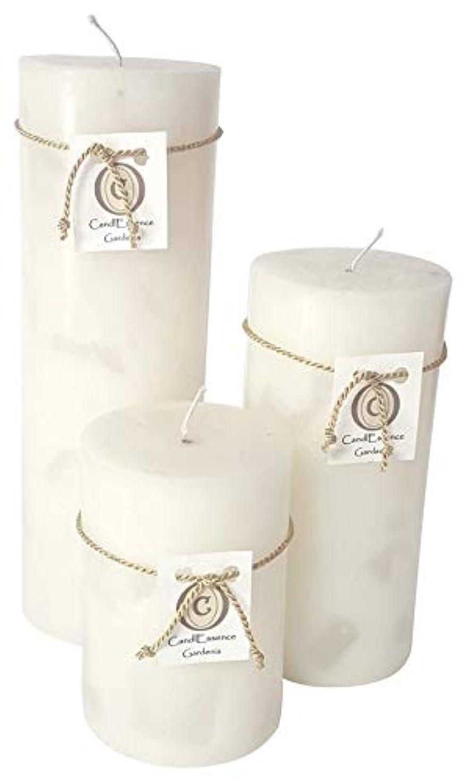 出くわすリークオークランドハンドメイドScented Candle – Long Burningピラー – Gardenia香り Set of 3 ホワイト GRDNIA