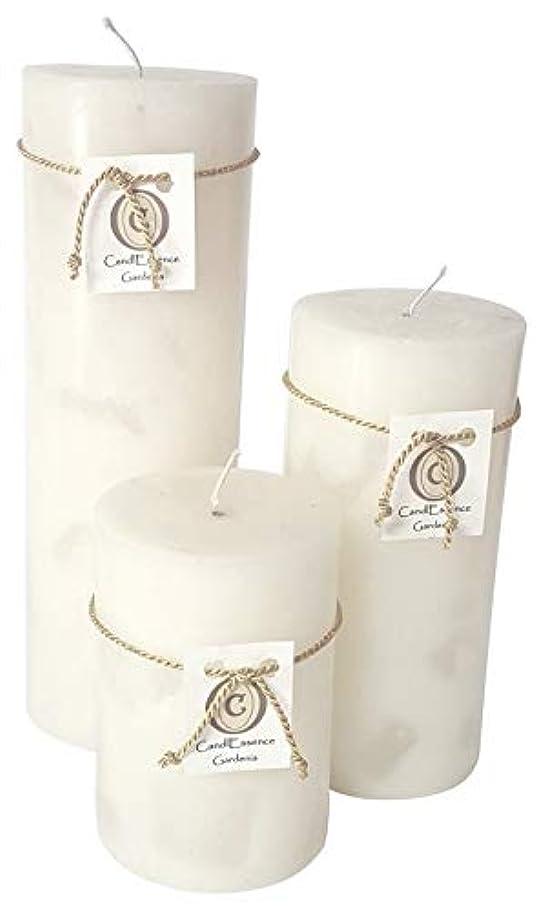 文法付録命令的ハンドメイドScented Candle – Long Burningピラー – Gardenia香り Set of 3 ホワイト GRDNIA