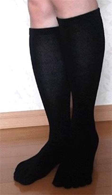 日本製 高品質こだわりシルク 5本指ハイソックス 22~24cm お買得2足組 (すべりとめなし)