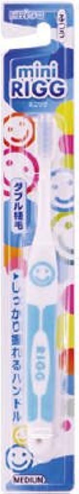 中間時代遅れ信頼性のあるエビス エビスミニリグハブラシ ふつう(歯ブラシ)小さなお口でもしっかり磨けるヘッドサイズ ※色は選べません×360点セット (4901221001905)