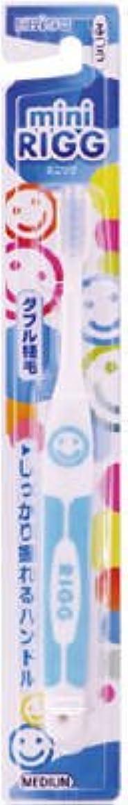 妊娠した運動後継エビス エビスミニリグハブラシ ふつう(歯ブラシ)小さなお口でもしっかり磨けるヘッドサイズ ※色は選べません×360点セット (4901221001905)
