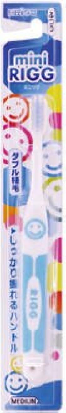ポテト水銀のバッテリーエビス エビスミニリグハブラシ ふつう(歯ブラシ)小さなお口でもしっかり磨けるヘッドサイズ ※色は選べません×360点セット (4901221001905)