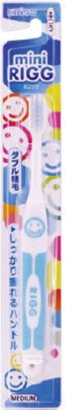 柱溶接ポーズエビス エビスミニリグハブラシ ふつう(歯ブラシ)小さなお口でもしっかり磨けるヘッドサイズ ※色は選べません×360点セット (4901221001905)