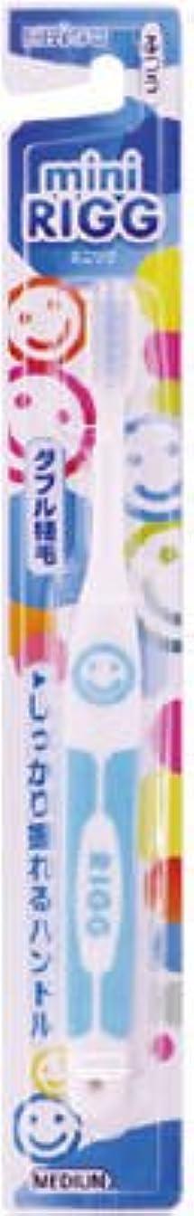 革命的ほとんどない分布エビス エビスミニリグハブラシ ふつう(歯ブラシ)小さなお口でもしっかり磨けるヘッドサイズ ※色は選べません×360点セット (4901221001905)