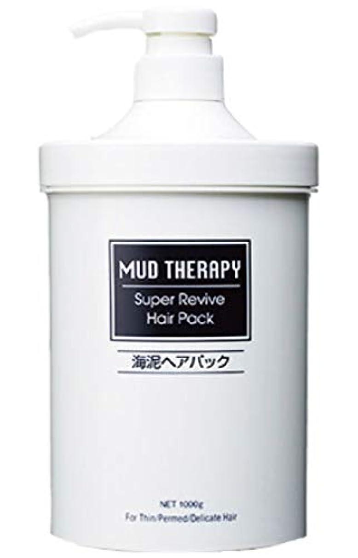 謝罪特別な付ける【3本セット】海泥マッドテラピー ヘアパック Q10 1000g