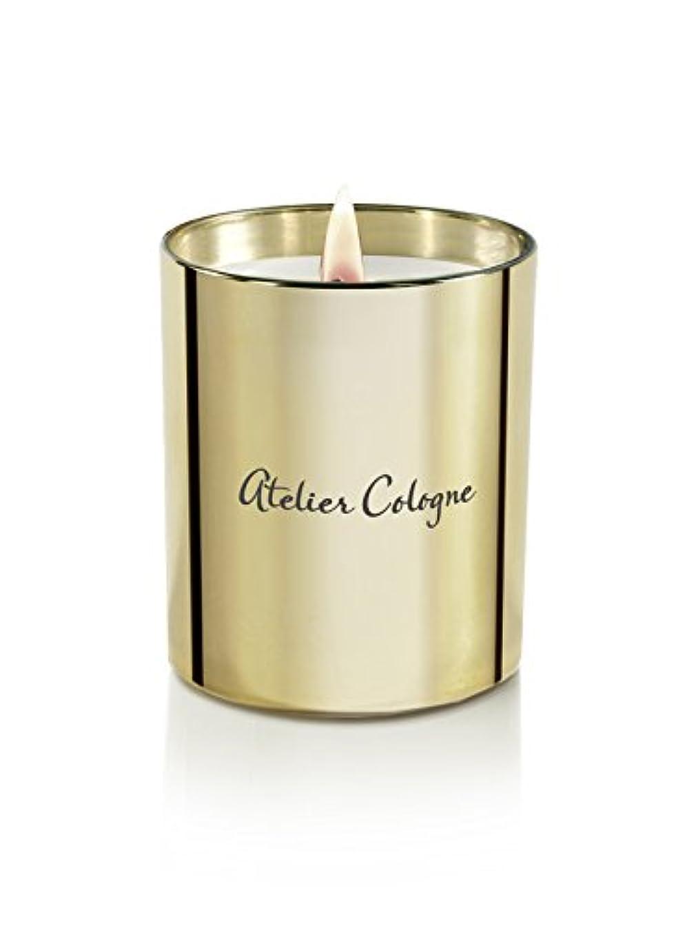 遺跡シャープスマイルアトリエコロン Bougie Candle - Gold Leather 190g/6.7oz並行輸入品