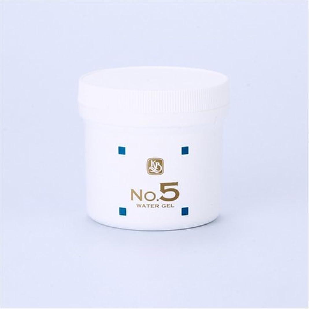 自発的パスタ見習い顔を洗う水シリーズ ウォーターゲルNo5(鎮静パック) 250g