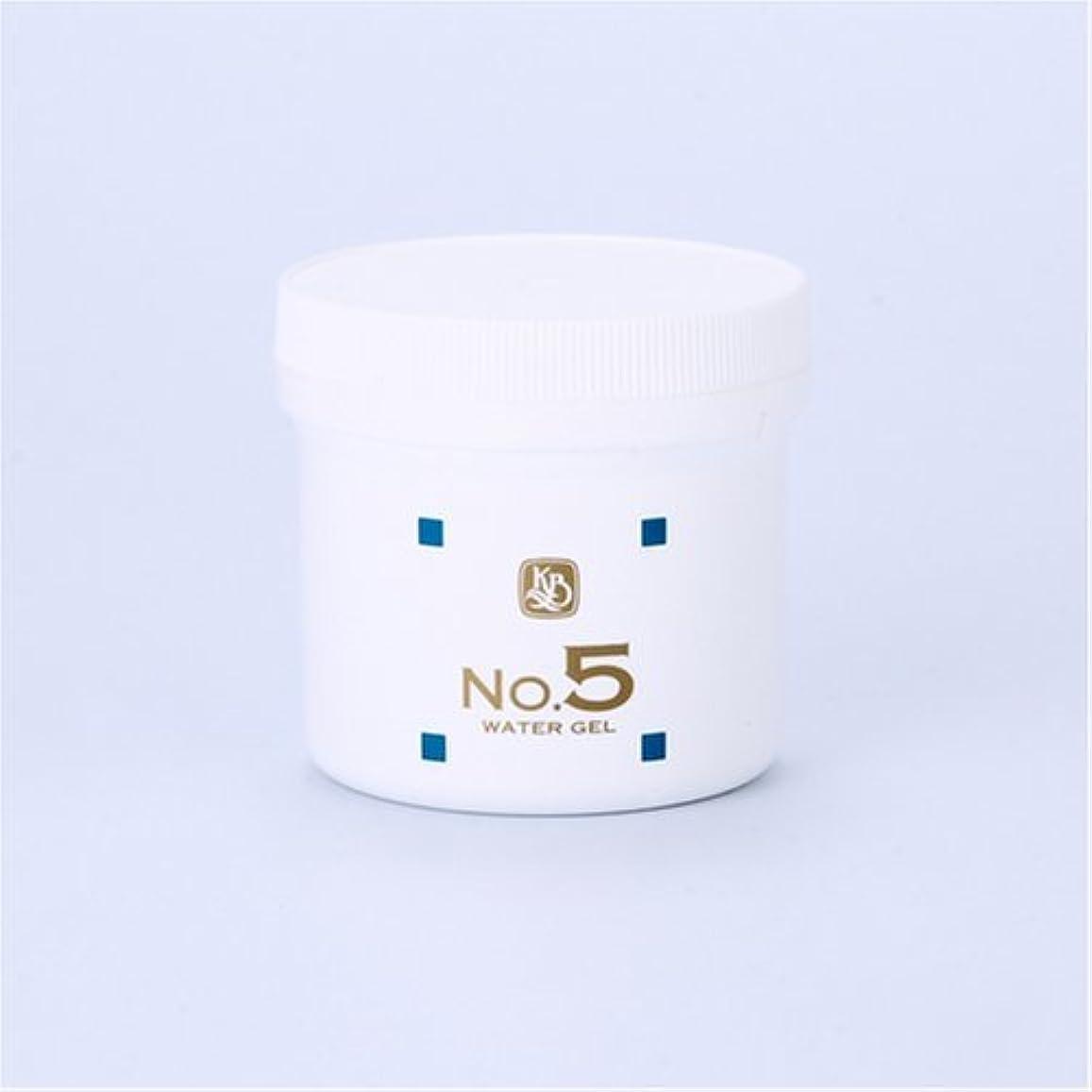 チャネル松の木美容師顔を洗う水シリーズ ウォーターゲルNo5(鎮静パック) 250g