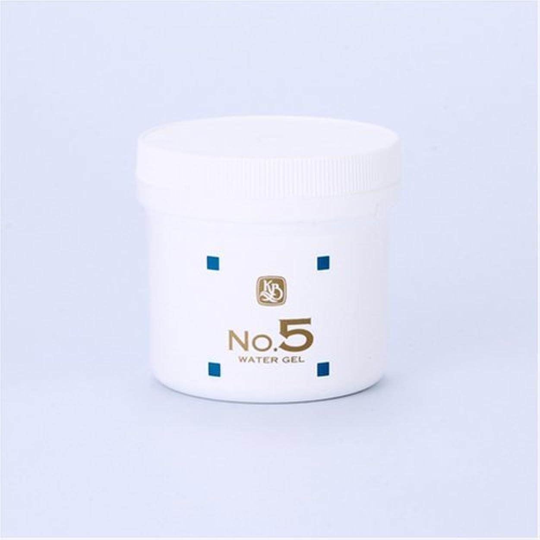 厚さ進捗乱気流顔を洗う水シリーズ ウォーターゲルNo5(鎮静パック) 250g