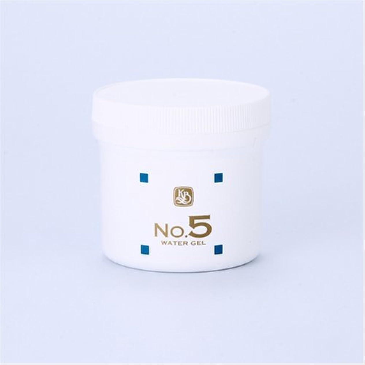 飼いならすアクセシブル破滅的な顔を洗う水シリーズ ウォーターゲルNo5(鎮静パック) 250g