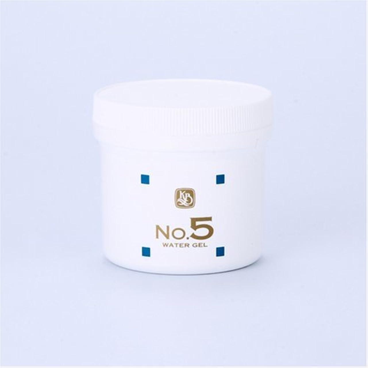 外部家静かに顔を洗う水シリーズ ウォーターゲルNo5(鎮静パック) 250g