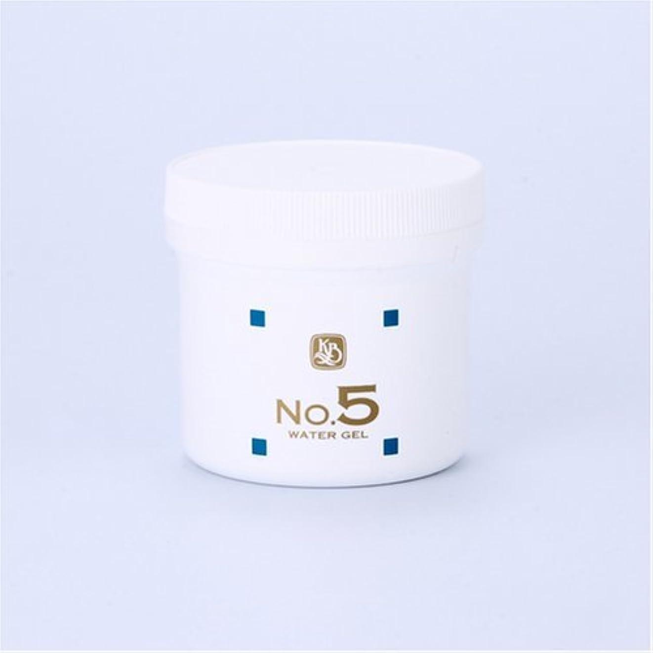 間に合わせ受動的本質的ではない顔を洗う水シリーズ ウォーターゲルNo5(鎮静パック) 250g