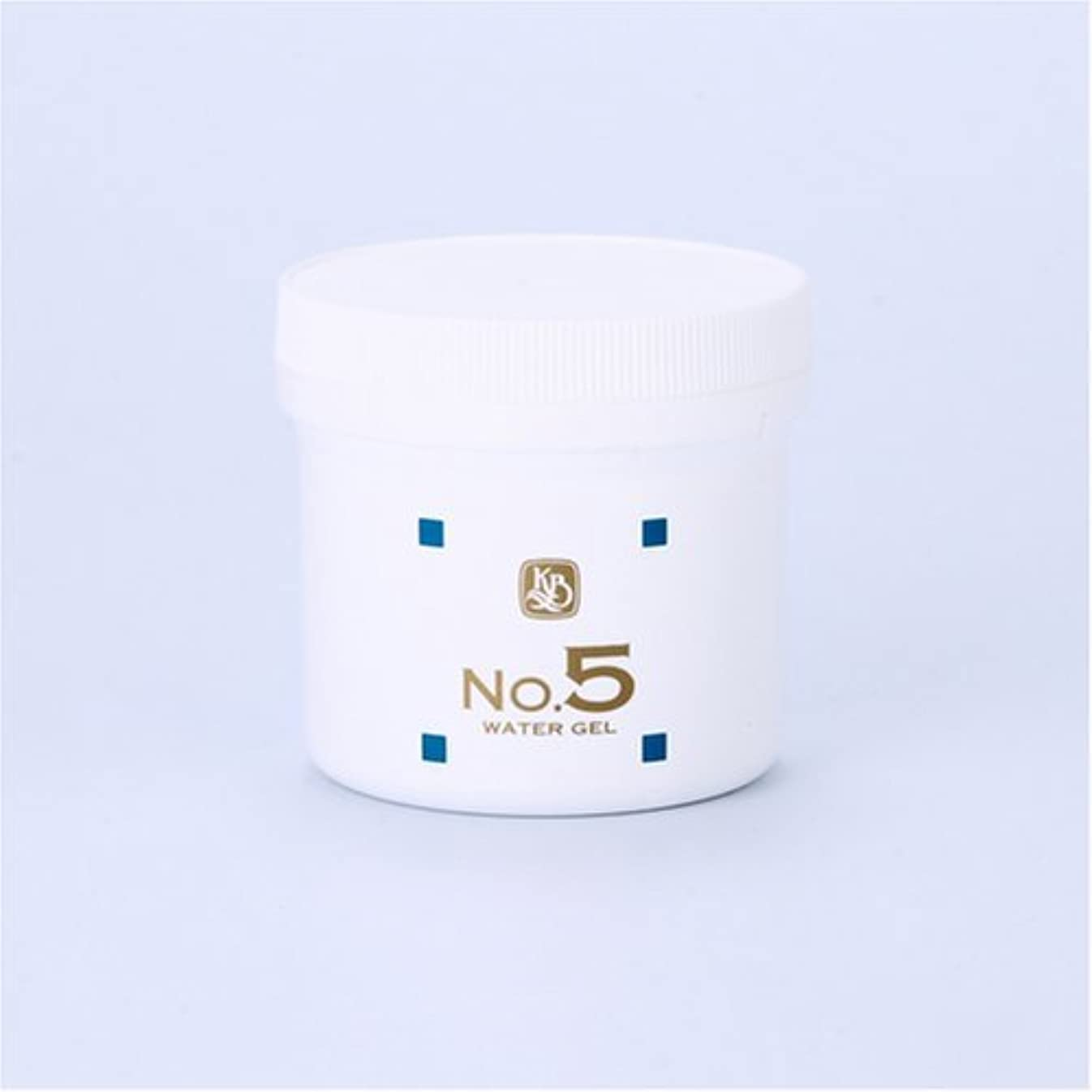 委任する納屋植物学顔を洗う水シリーズ ウォーターゲルNo5(鎮静パック) 250g