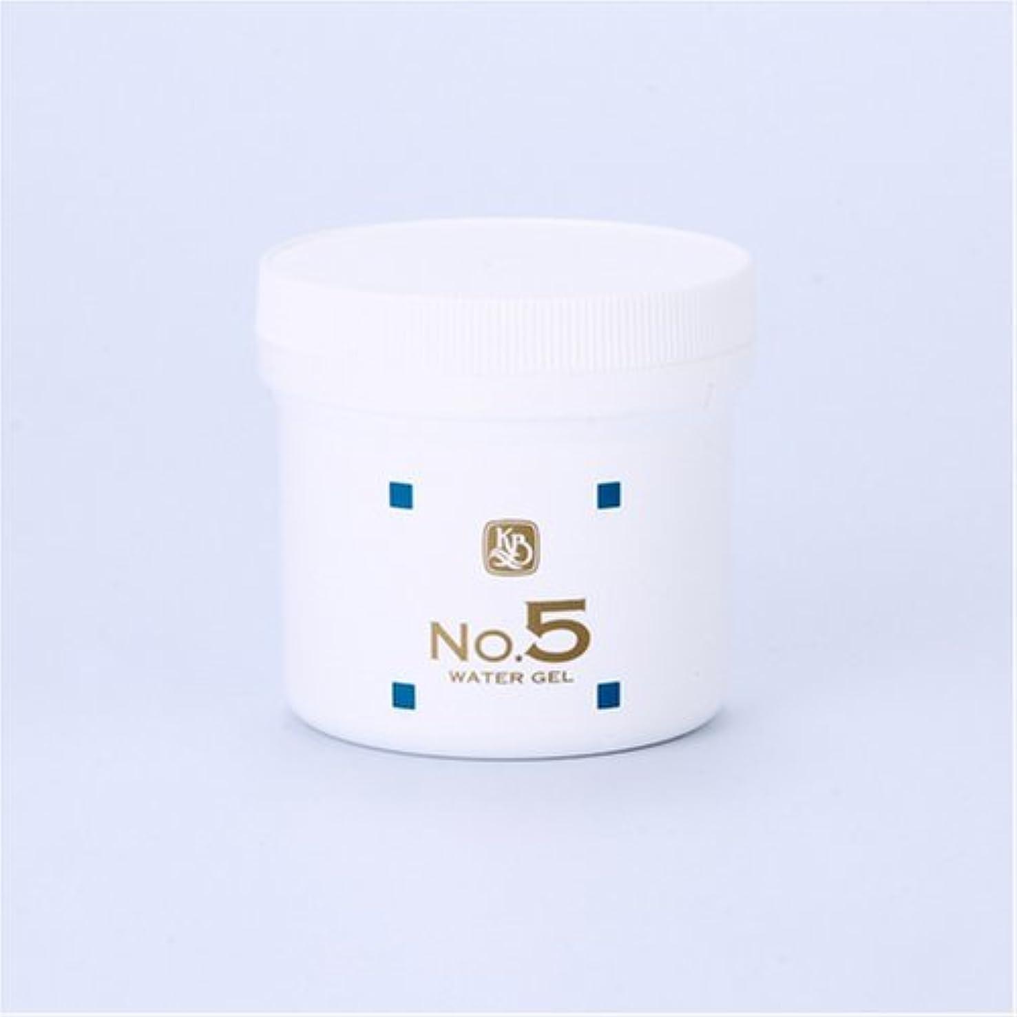 四原油日光顔を洗う水シリーズ ウォーターゲルNo5(鎮静パック) 250g