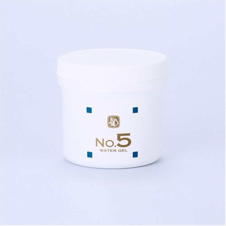 警戒今鎮痛剤顔を洗う水シリーズ ウォーターゲルNo5(鎮静パック) 250g