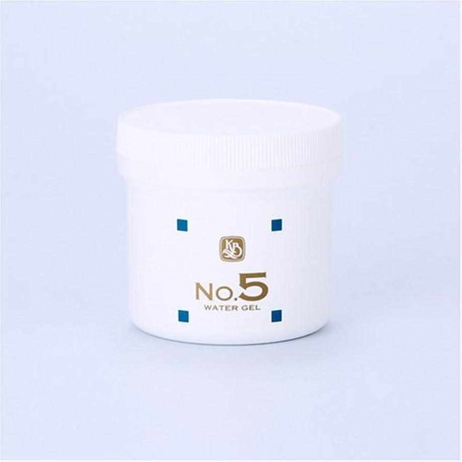 発火する効能あるかけがえのない顔を洗う水シリーズ ウォーターゲルNo5(鎮静パック) 250g