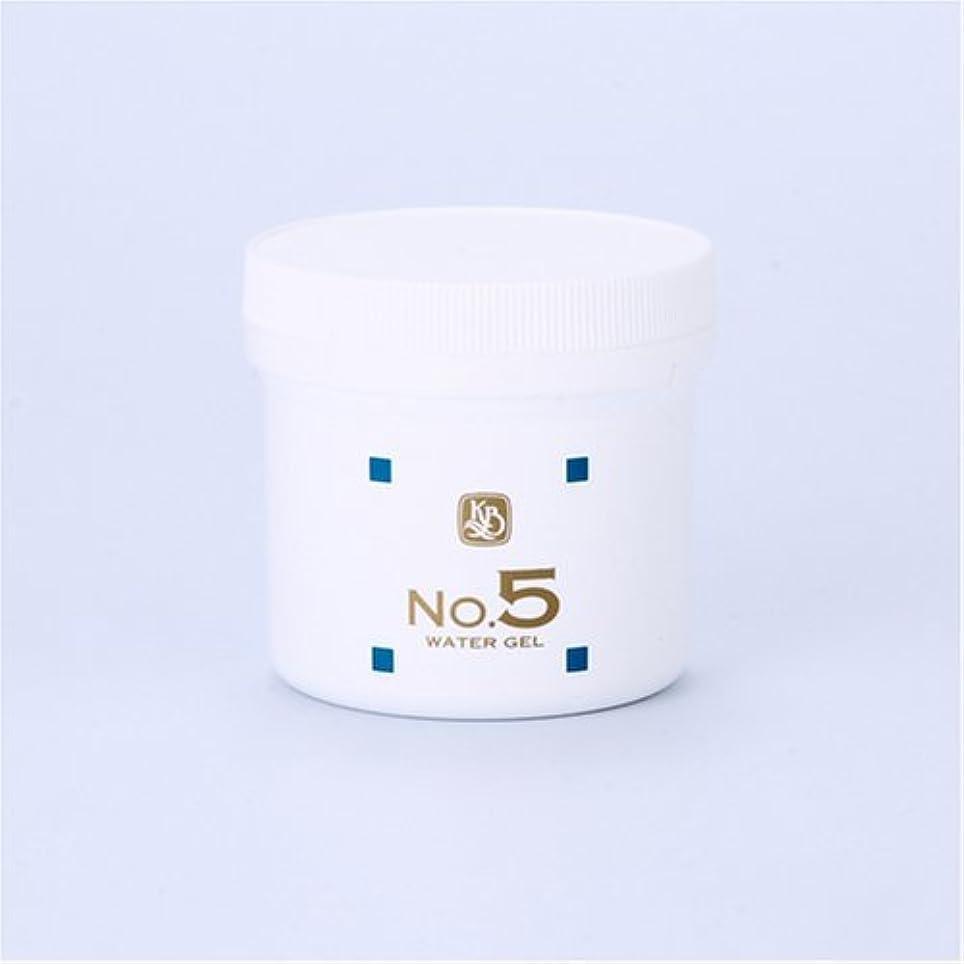 散歩に行くカイウス製品顔を洗う水シリーズ ウォーターゲルNo5(鎮静パック) 250g