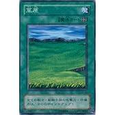 草原 【N】 EX-82-N [遊戯王カード]《EX-R》