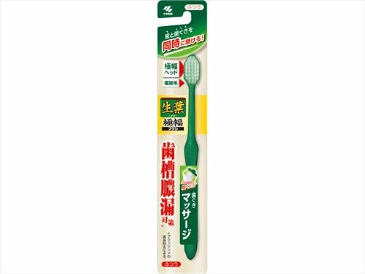 エーカー枠紳士生葉極幅ブラシ ふつう × 5個セット