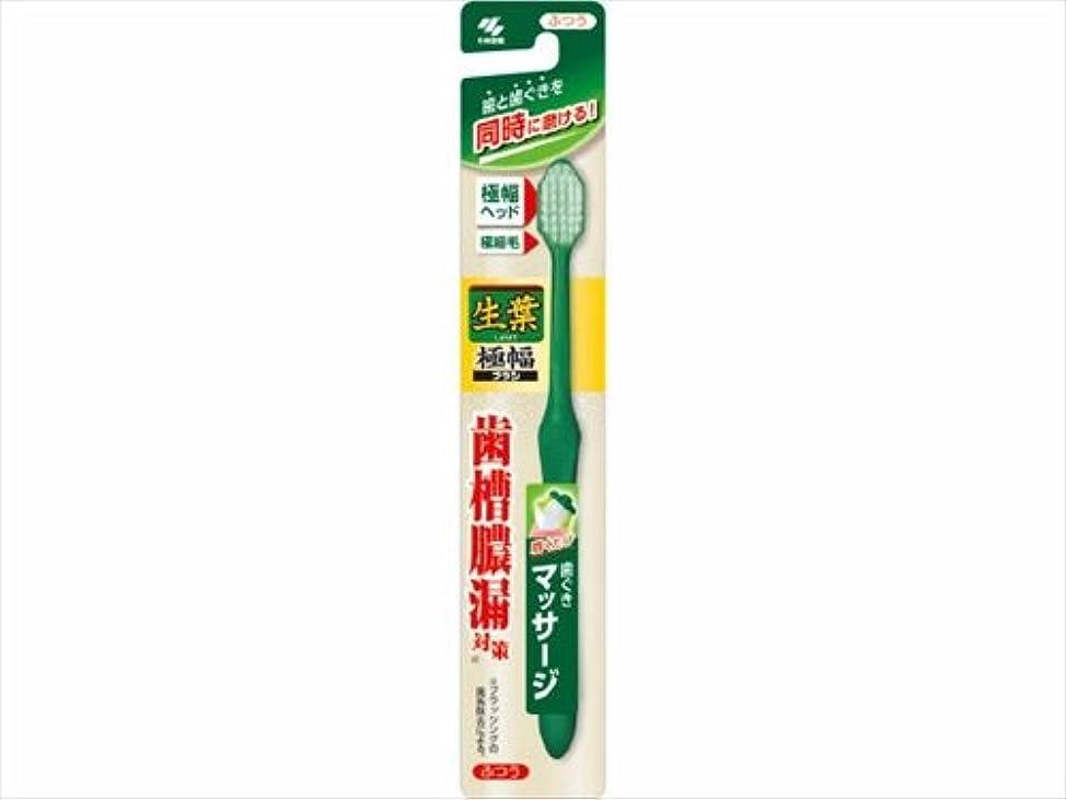 生葉極幅ブラシ ふつう × 5個セット