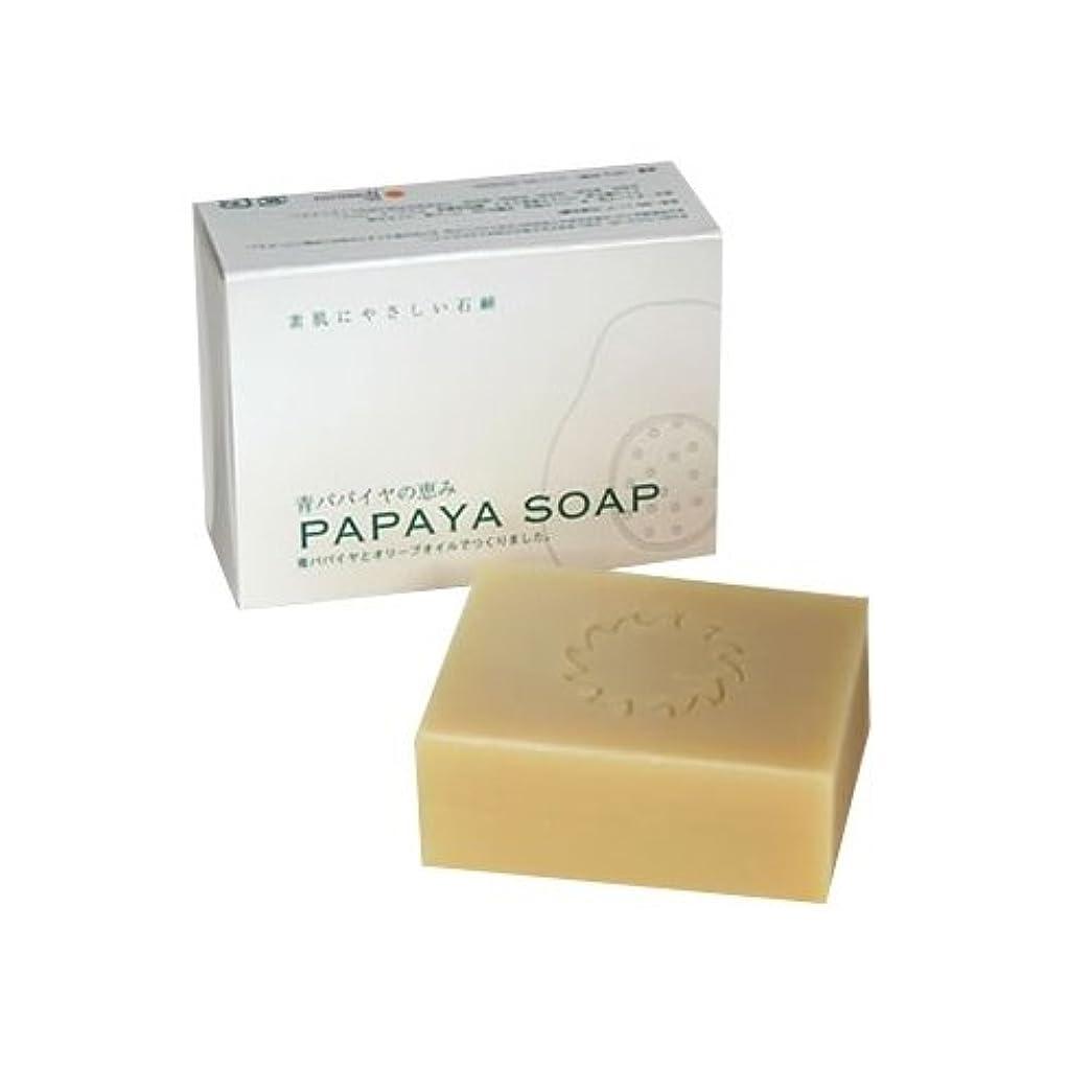 にもかかわらず憲法テクスチャー青パパイヤの恵み PAPAYA SOAP(パパイヤソープ) 100g