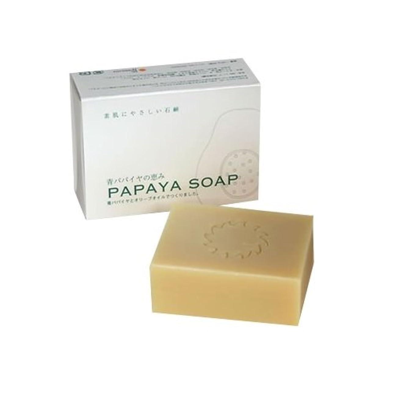 ゴミコンパニオン折り目青パパイヤの恵み PAPAYA SOAP(パパイヤソープ) 100g