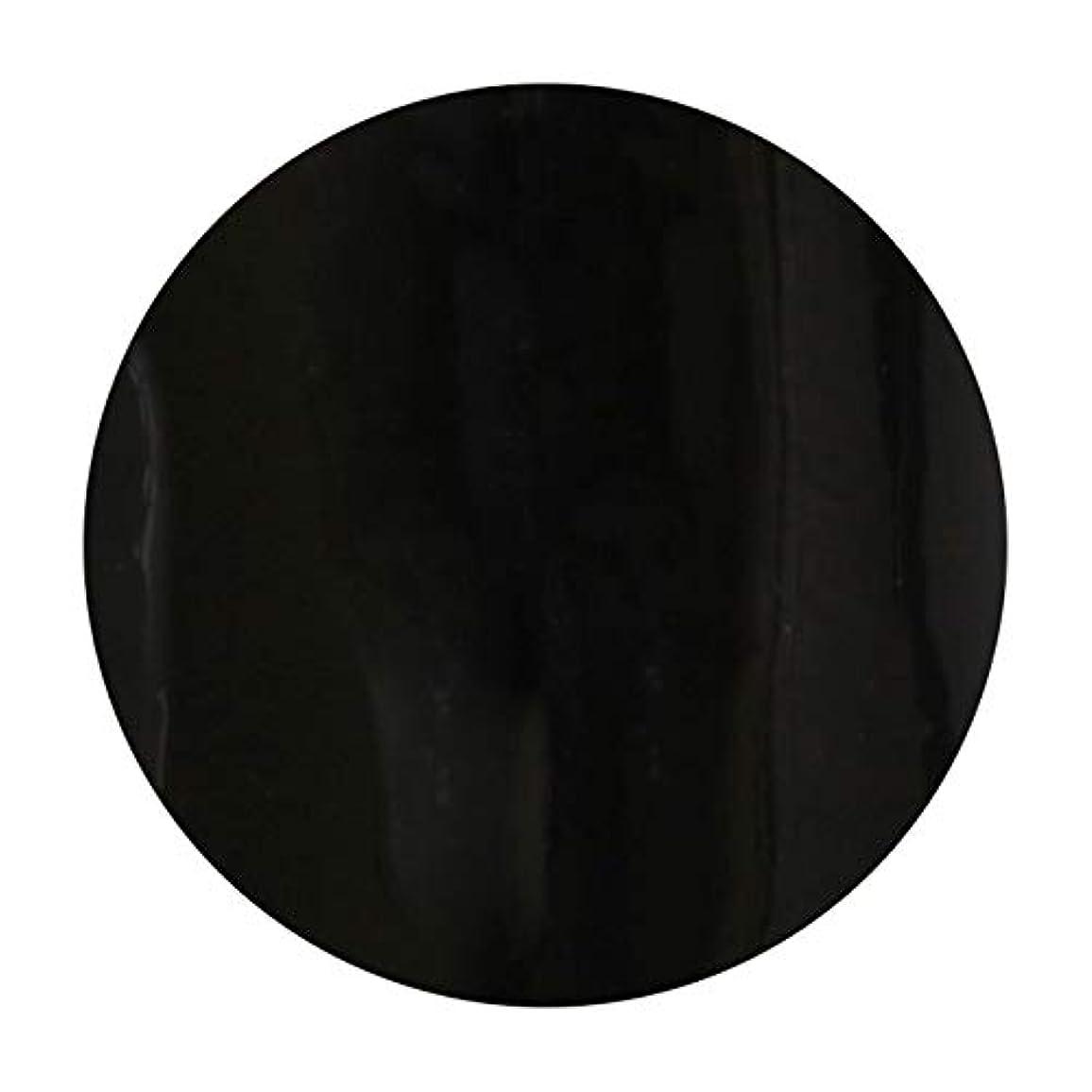 最大森実際にT-GEL COLLECTION ティージェル カラージェル D219 ブラックライナーEX 4ml