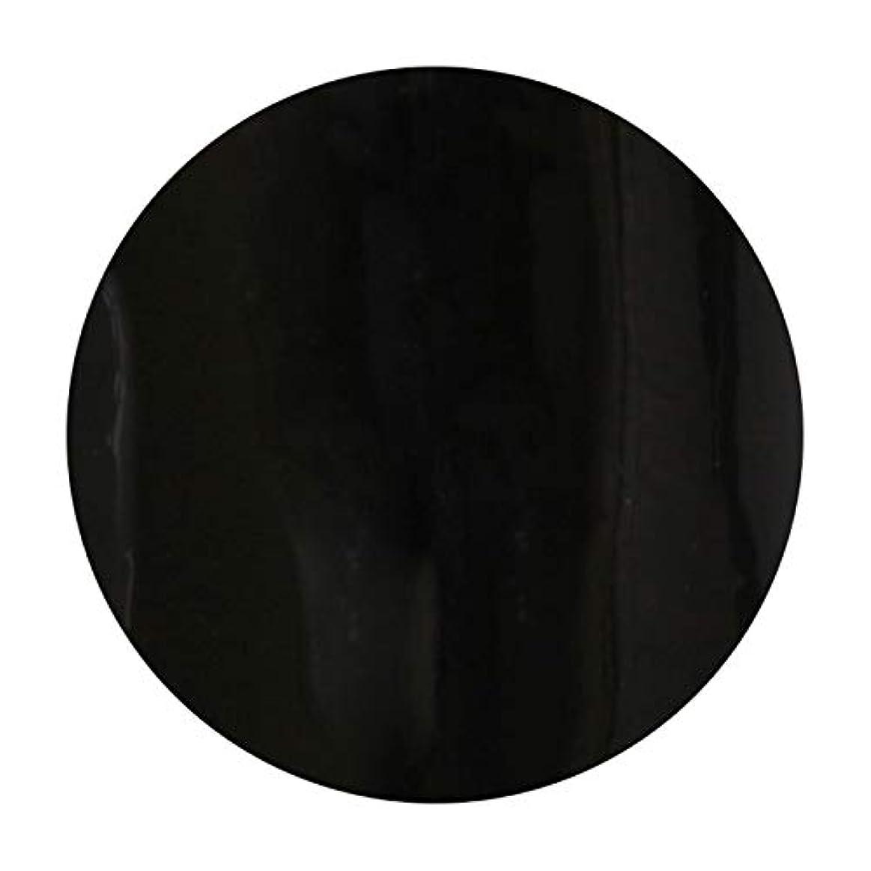 印をつけるシェード群衆T-GEL COLLECTION ティージェル カラージェル D219 ブラックライナーEX 4ml