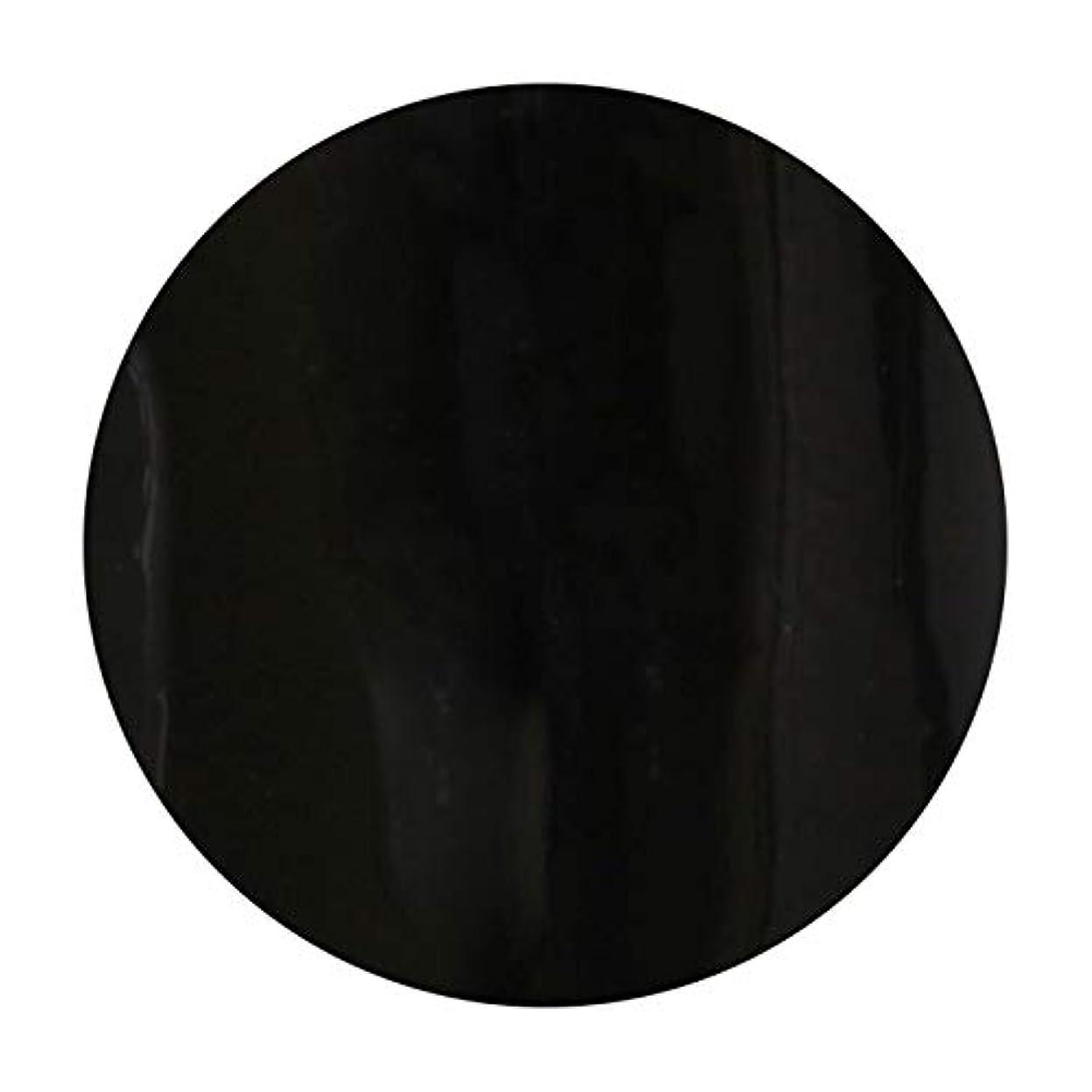 スコットランド人廃棄する胚T-GEL COLLECTION ティージェル カラージェル D219 ブラックライナーEX 4ml