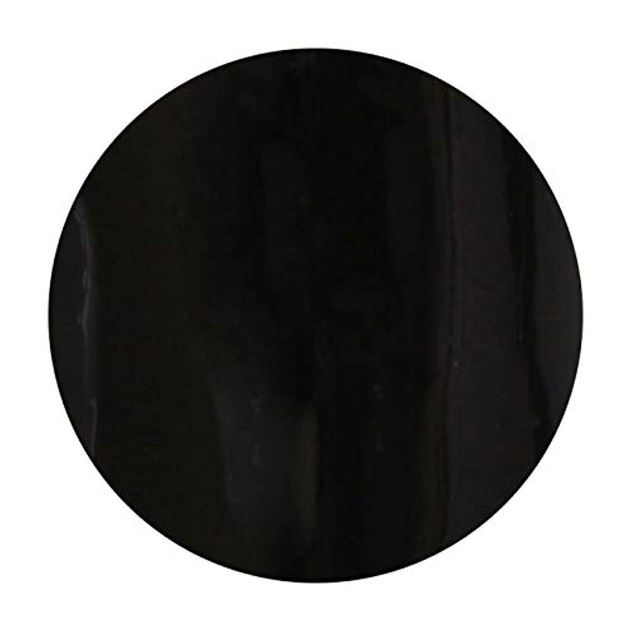 引き渡す教育者歩くT-GEL COLLECTION ティージェル カラージェル D219 ブラックライナーEX 4ml