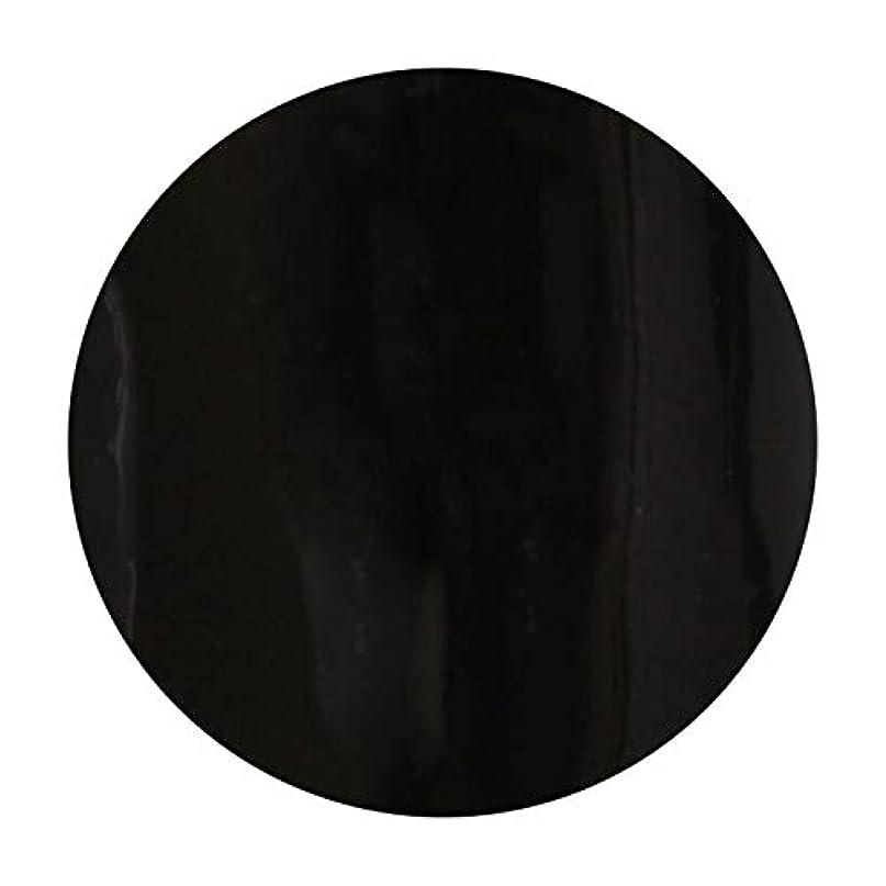 熟練した拡散するインターネットT-GEL COLLECTION ティージェル カラージェル D219 ブラックライナーEX 4ml