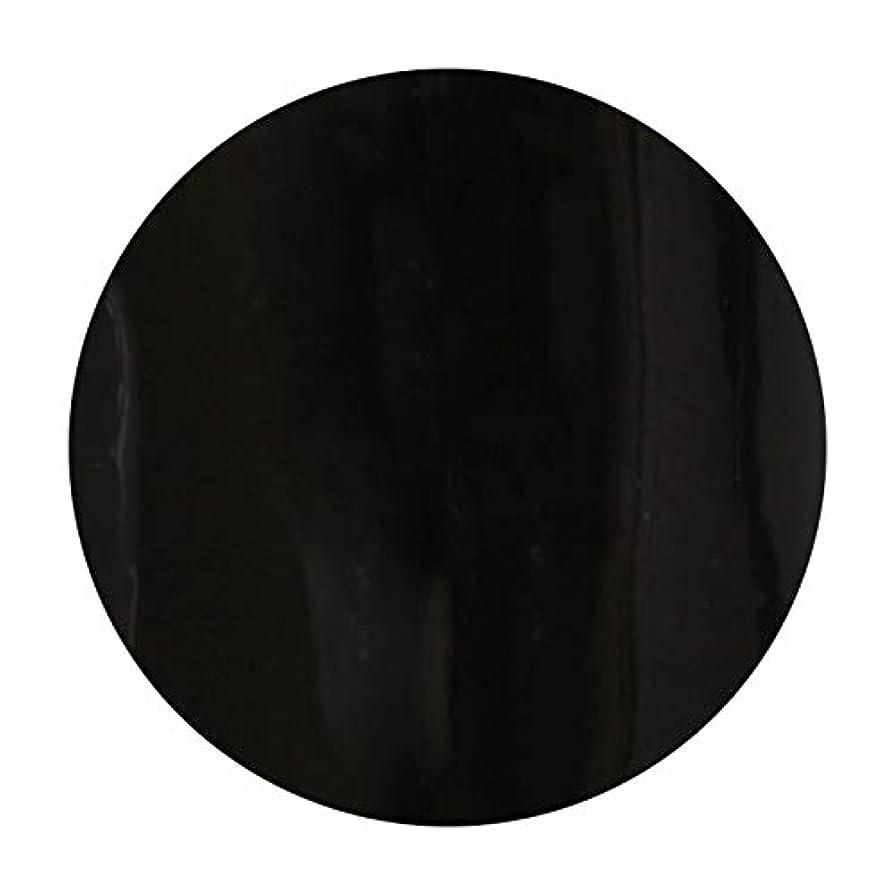 遠近法引き出すびっくりしたT-GEL COLLECTION ティージェル カラージェル D219 ブラックライナーEX 4ml