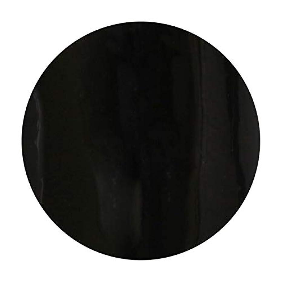 売り手新聞定期的T-GEL COLLECTION ティージェル カラージェル D219 ブラックライナーEX 4ml