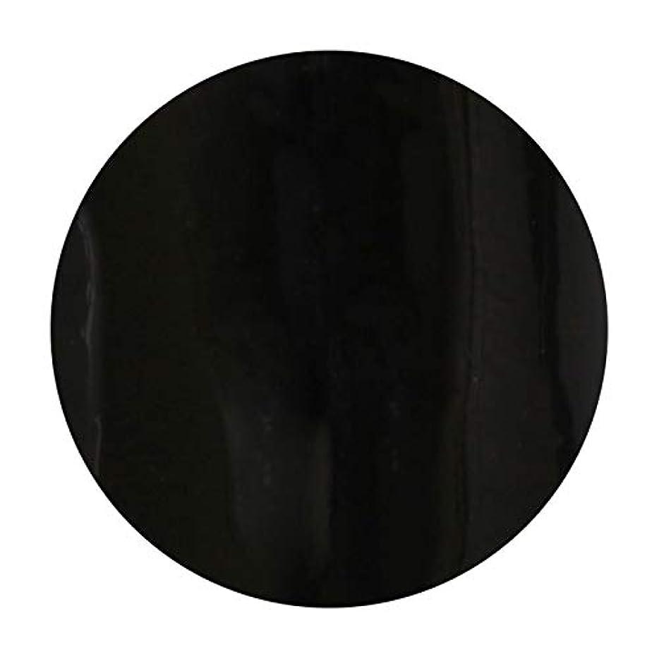 頼る白内障統合するT-GEL COLLECTION ティージェル カラージェル D219 ブラックライナーEX 4ml