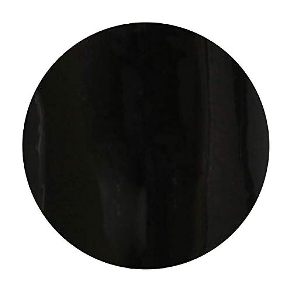 ディレクター印をつける純粋なT-GEL COLLECTION ティージェル カラージェル D219 ブラックライナーEX 4ml