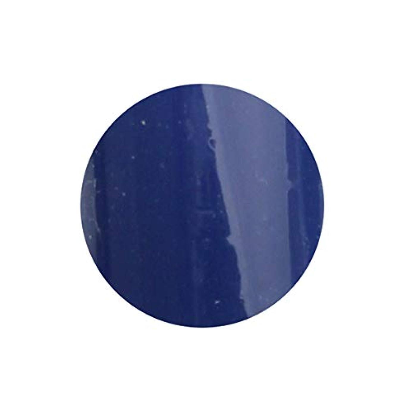 クライアント発掘毎回SHAREYDVA シャレドワ+ ネイルカラー No.34 ロイヤルブルー