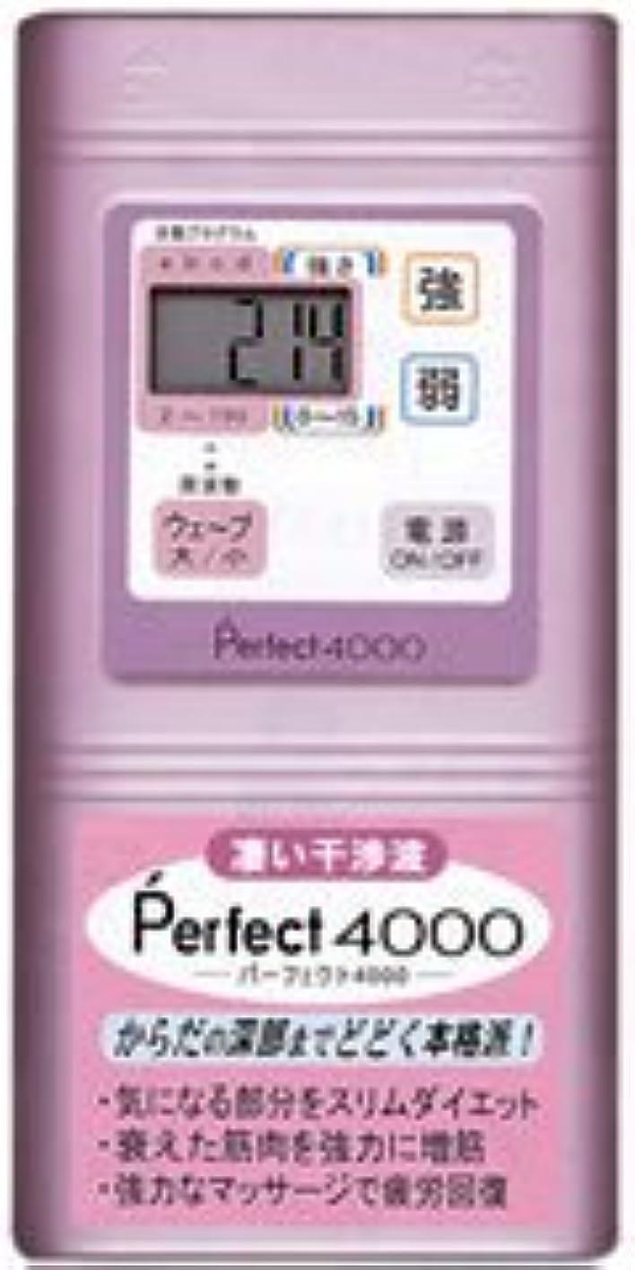 講堂法王眩惑するPerfect4000 干渉波EMS パーフェクト4000
