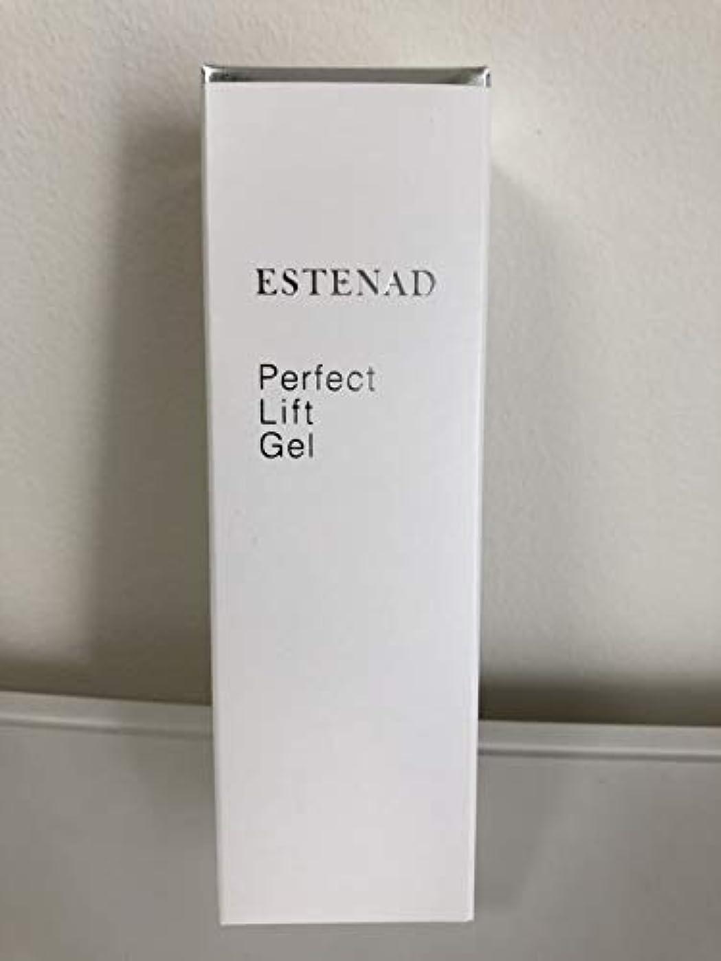 ジレンマ出席簡単にエステナード パーフェクトリフトジェル 美容液ジェル 80g