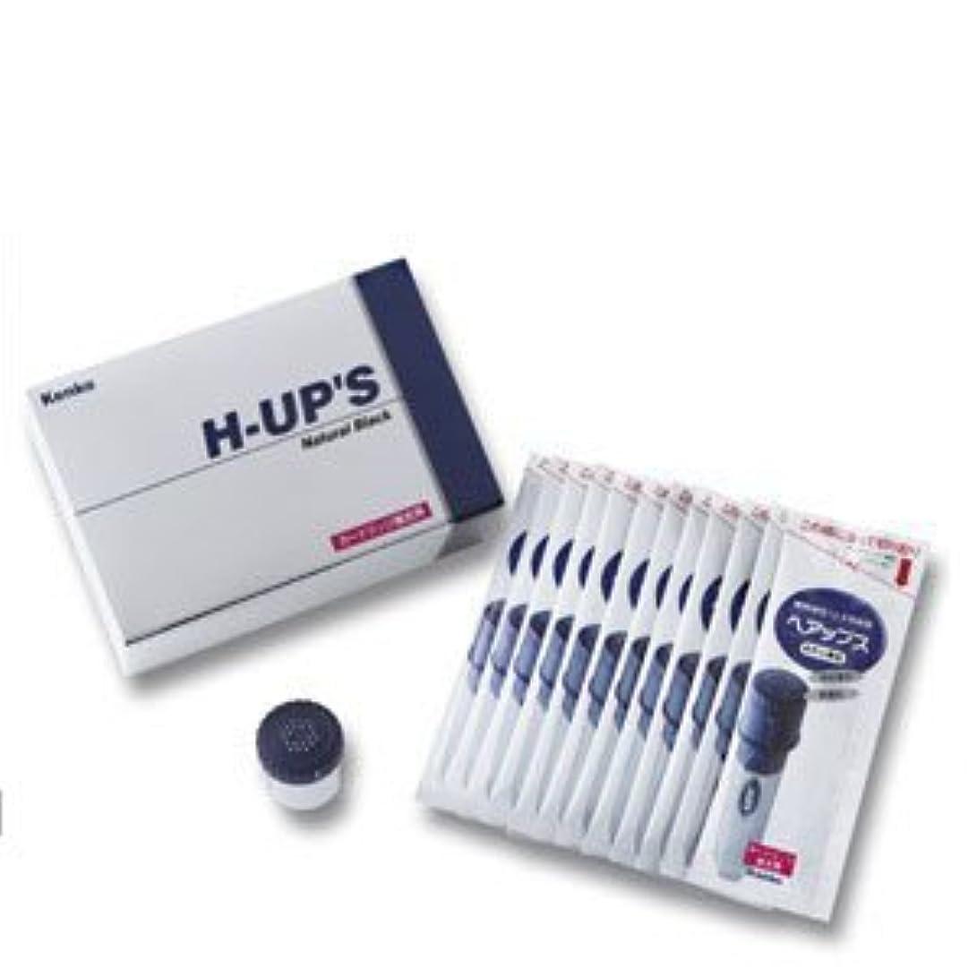 痛い前件気候H-UP S ヘアップス 補充用カートリッジ 頭皮薄毛カバー粉末 ブラウン
