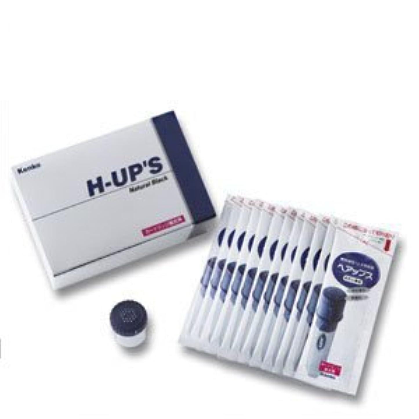 呪い減衰医学H-UP S ヘアップス 補充用カートリッジ 頭皮薄毛カバー粉末 ブラウン