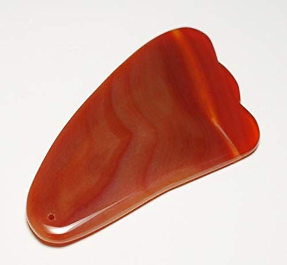ハッチ優れましたランタンカーネリアン かっさ 羽型 Shylph 美と健康に マッサージ 赤瑪瑙カッサ